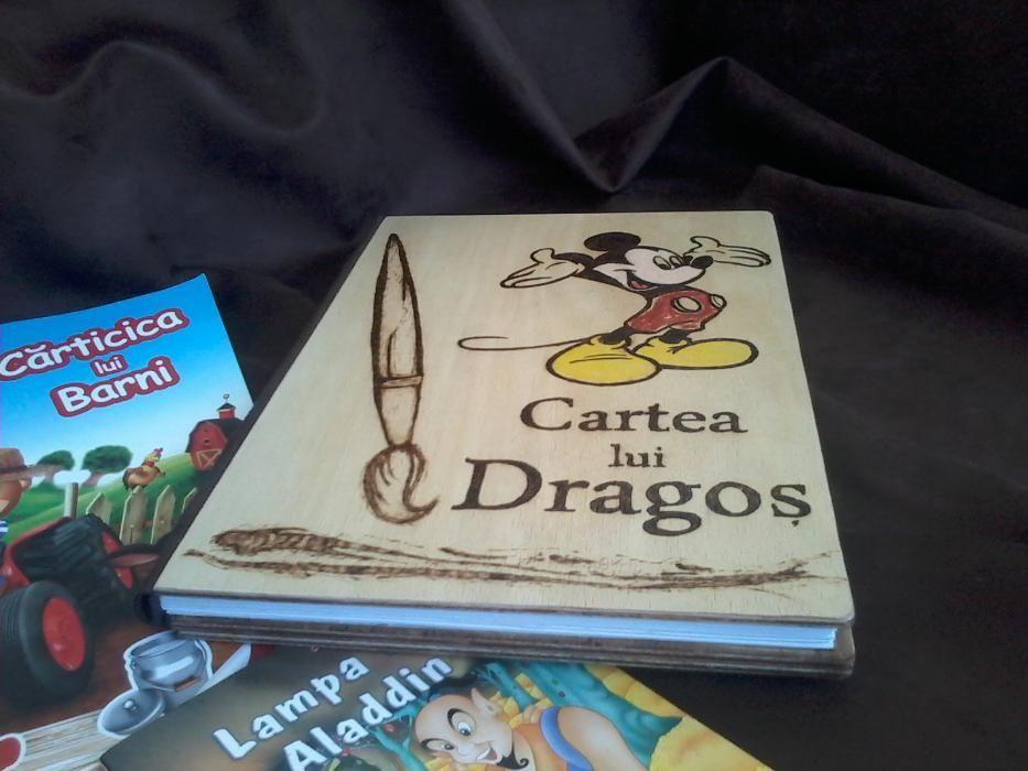 Cartea micului artist/Jurnal pentru copii+BONUS: 100 povesti pt copii