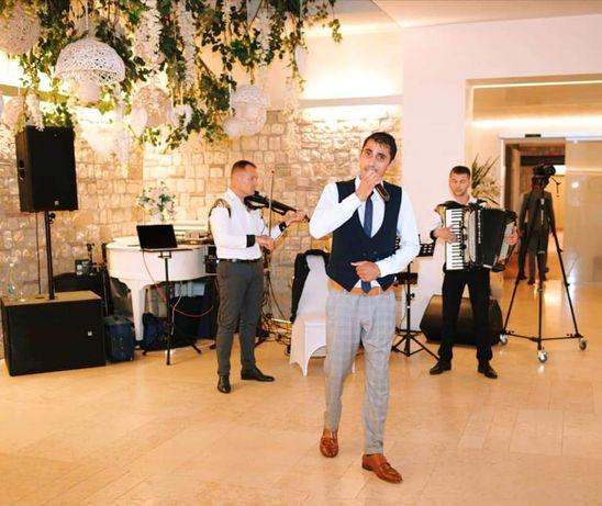 Formatie nuntă Iași