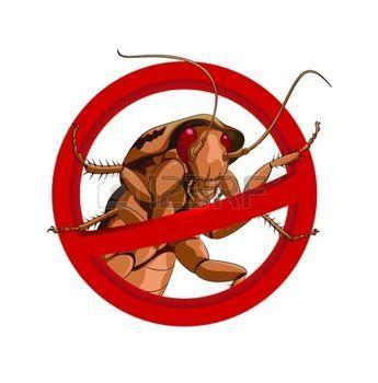 Дезинсекция дератизация Обработка от клопов, кандала, тараканов, мышей
