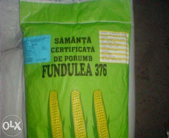 Samanta Porumb FUNDULEA 376 Certificata