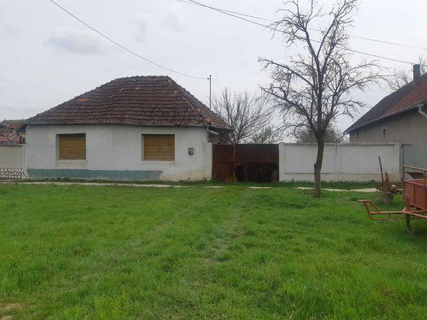 Casa de vanzare Mișca