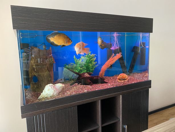 СРОЧНО 400литров аквариум