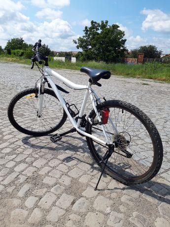 """Bicicletă /21v/26"""""""