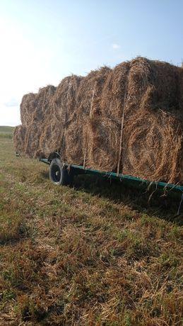Vind cereale grîu orz ovaz și baloți