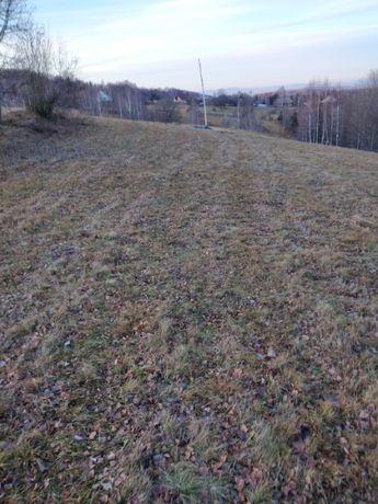 Vand teren comuna Rasca Jud Cluj
