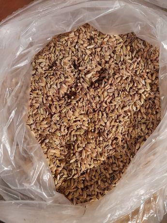 Гръцки анасон 10лв/кг