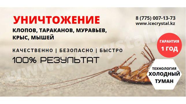 дезинфекция дезинсекция дератизация Уничтожение комаров ,клопов ,тарак