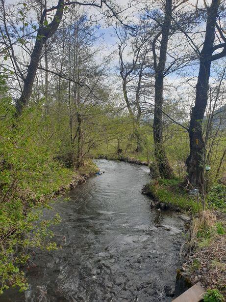 Vand teren Bistra Mureșului