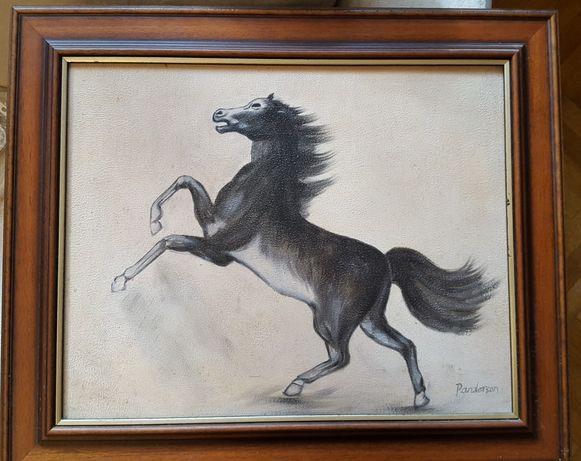 Tablou (desen) Cal cabrat, semnat Penderson