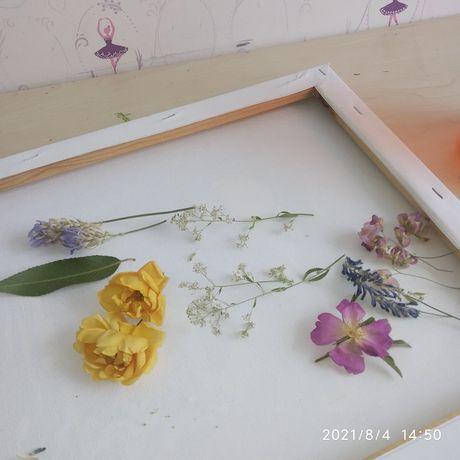 Сушеные цветы для заливки