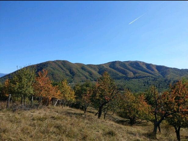 Vând teren intravilan 2039 mp în Cisnadioara