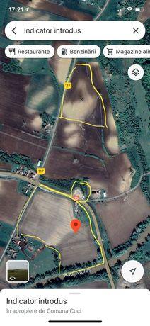 Vand 9 ha teren agricol, din care 2 ha intravilan