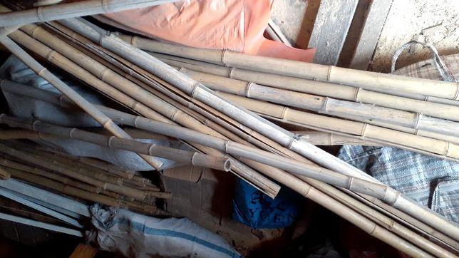Продам бамбуковые палки