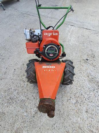 Cositoare agria 5100