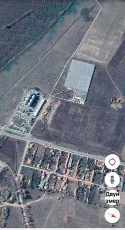 37 декара Земеделска земя село Черничево