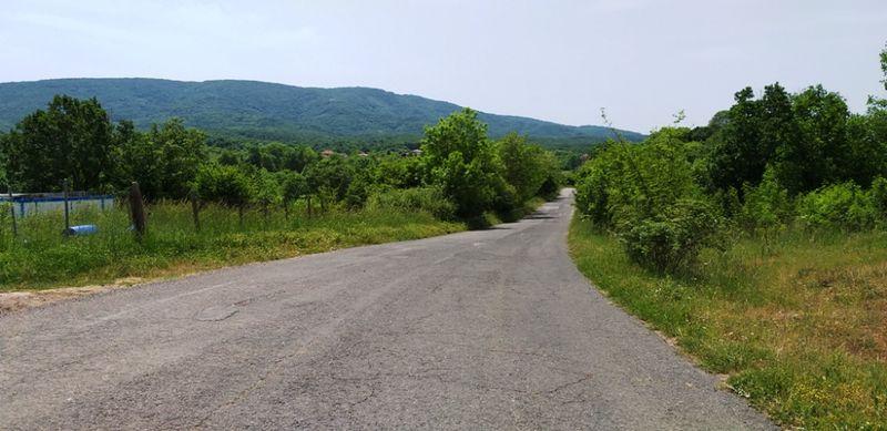 Лозе в село Велика, Община Царево с. Велика - image 1