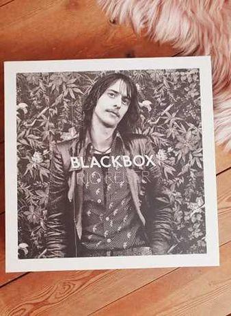 Blackbox Rio Reiser CD + книга