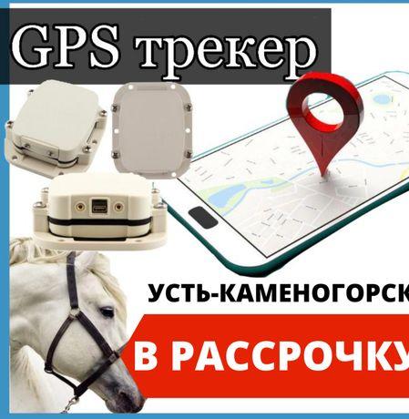 Спутникалық GPS трекері SmartOne C жылқыларға Усть-каменогорске