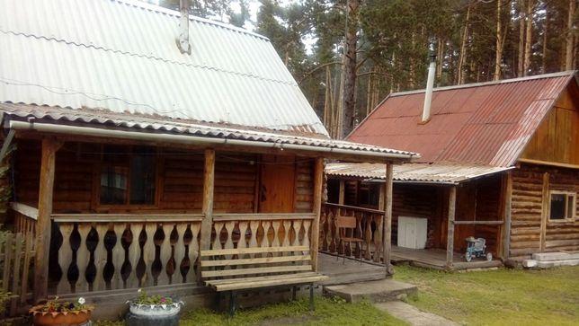 Сдам домики и баню в курортной зоне с Зеренда