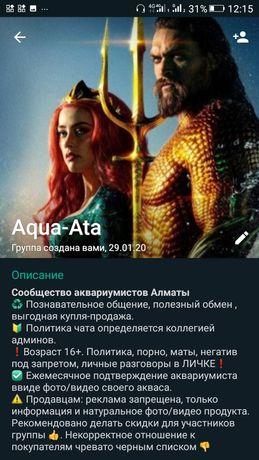 Группа аквариумистов Алматы