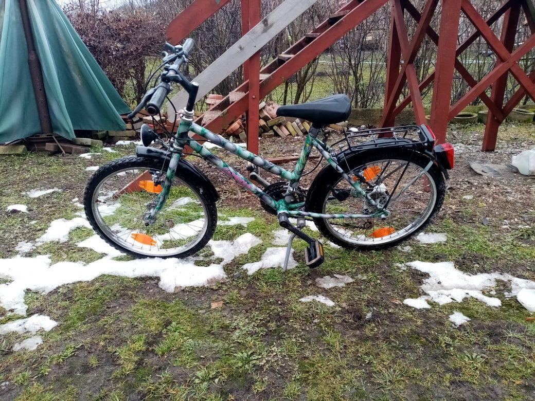 Bicicleta capriolo