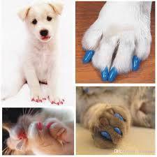 Протектори за кучешки нокти