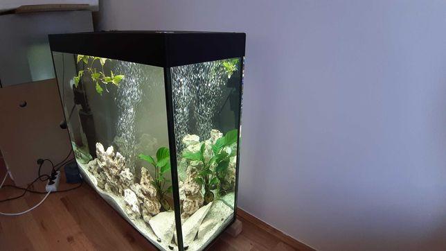Vand acvariu complet echipat 150 l deosebit