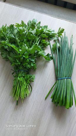 Продам зелень с грядки