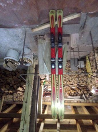 Дамски ски за обувка до 41 номер ,158 см.