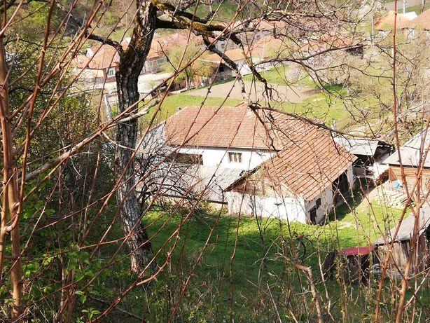 Vand casa in Briheni, 10 km de Stei