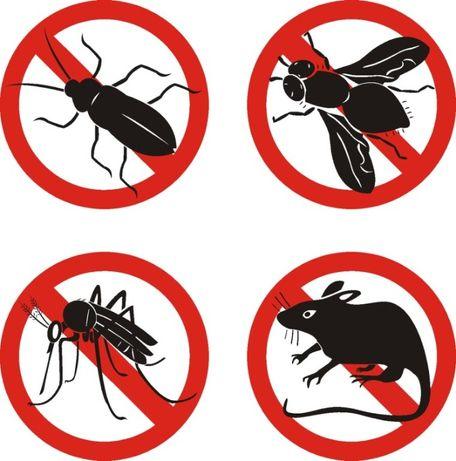 ДЕЗИНФЕКЦИЯ Уничтожение Клопов, Избавление от тараканов, муравьев