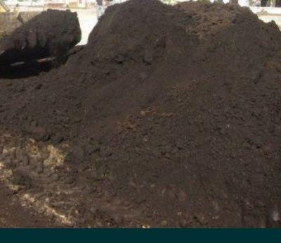 Чернозем плодородный слой перегной