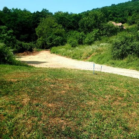 Teren de 7167 mp de vinzare in Valea Popii. Alba Iulia