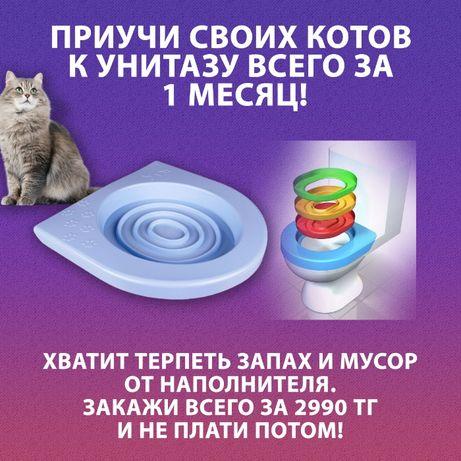 Лоток для приучения кошек к унитазу, лоток унитаз , лоток для кошек,