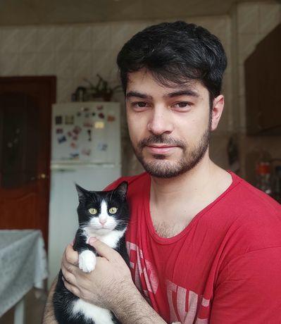 Ищу руки для кошки по кличке Муська