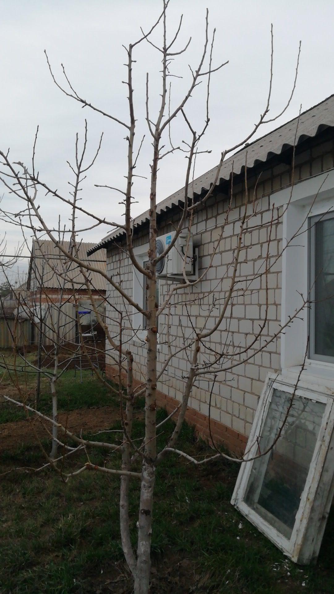 Два земельных участка на одном недостроенный домик