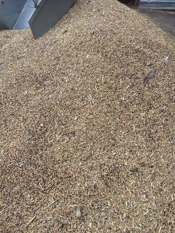 Продажа зерноотходов