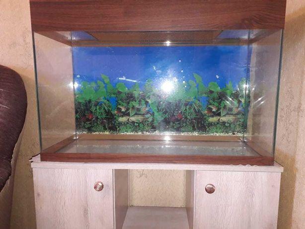 Продается аквариум на 100 литров с тумбой по цене 30 000 тенге.