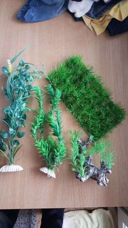 Изкуствени водорасли