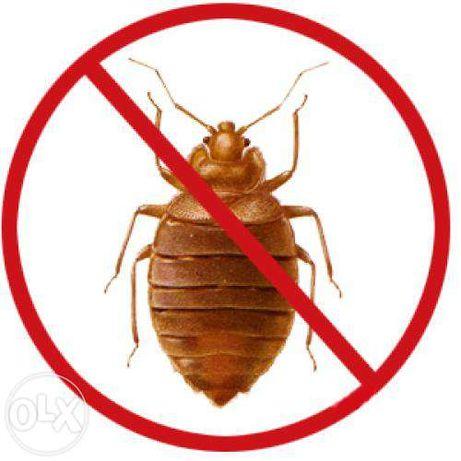 Дезинсекция дезинфекция от клопов ,тараканов , блох в Актау.Химчистка.