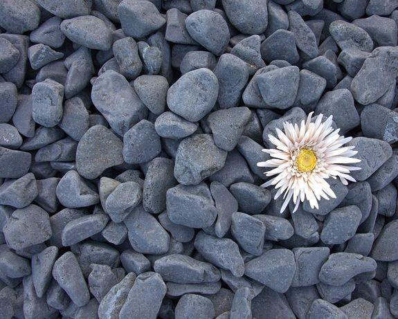Piatra naturala/piatra rotunjita neagra 1-3/3-6/6-10cm