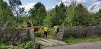 Curatare tocare defrisare cosire vegetatie iarba ambrozie rugi