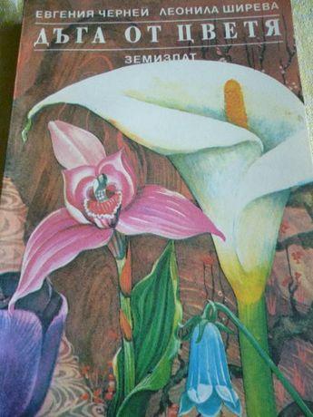 Дъга от цветя - Евгения Черней, Леонила Ширева