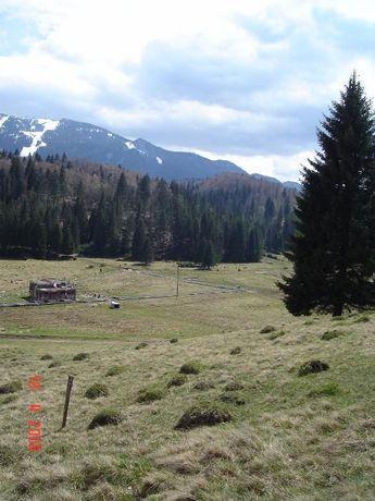 Vand teren Poiana Brasov - Poiana Mica - str. Stanii