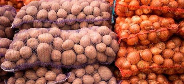 Продам картофель картошка Анна Гала очень хорошие крупные свежие ne
