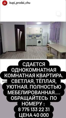 Сдается однокомнатная комнатная квартира. Светлая, тёплая,.  уютная.