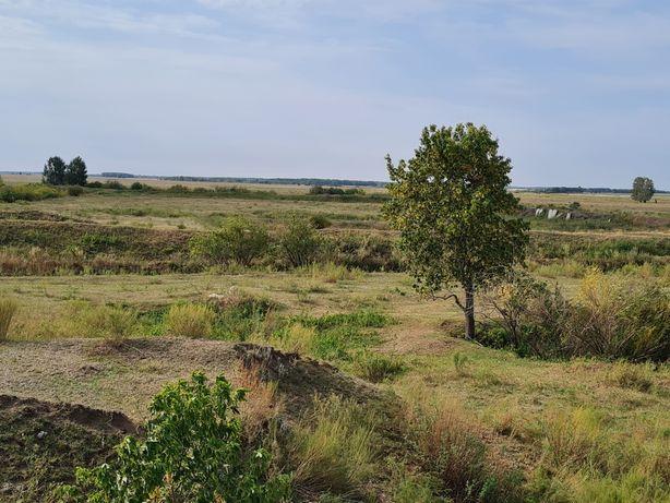 Продам ферму 20 км от Костаная!