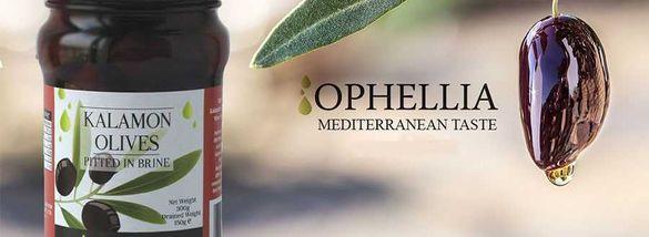 маслина на Ophellia Каламата, Амфиса, Зелени различни видове