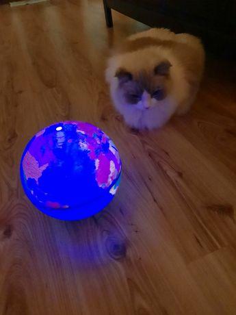 Veioza Glob magic, cadou magic pentru copii de orice vârstă!