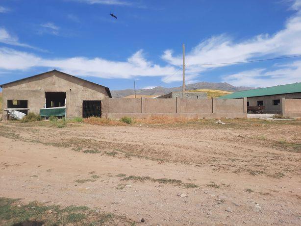 Продам готовую ферму со складами для разведения КРС